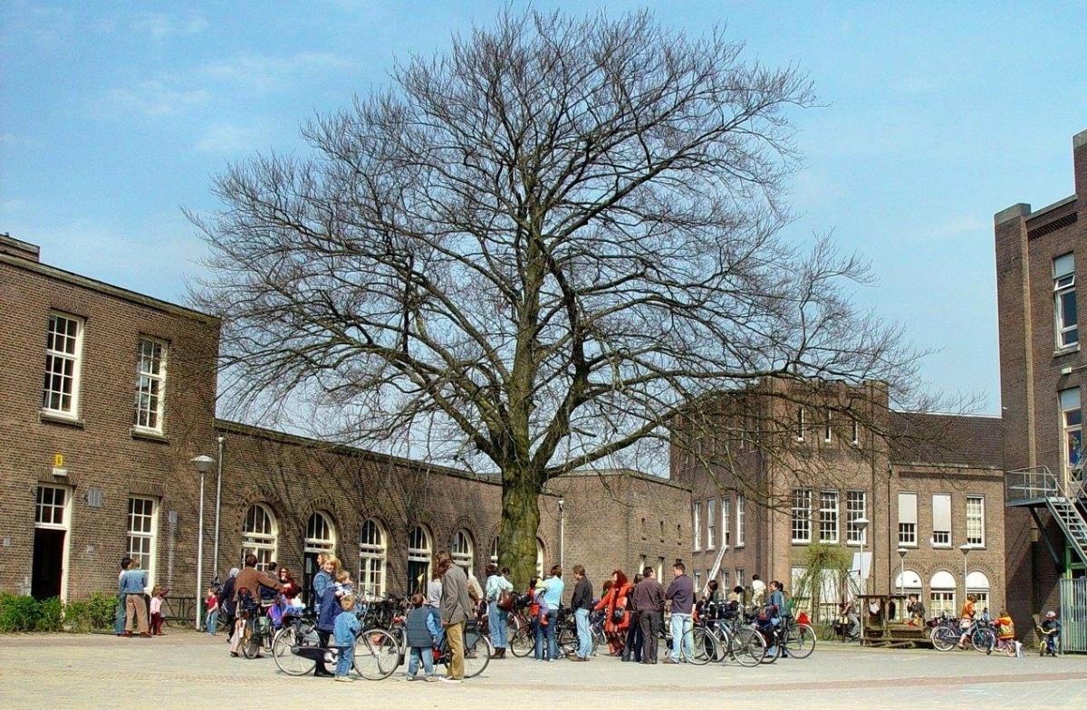 Op weg naar de middelmaat – Alfie Kohn over onderwijs en excelleren